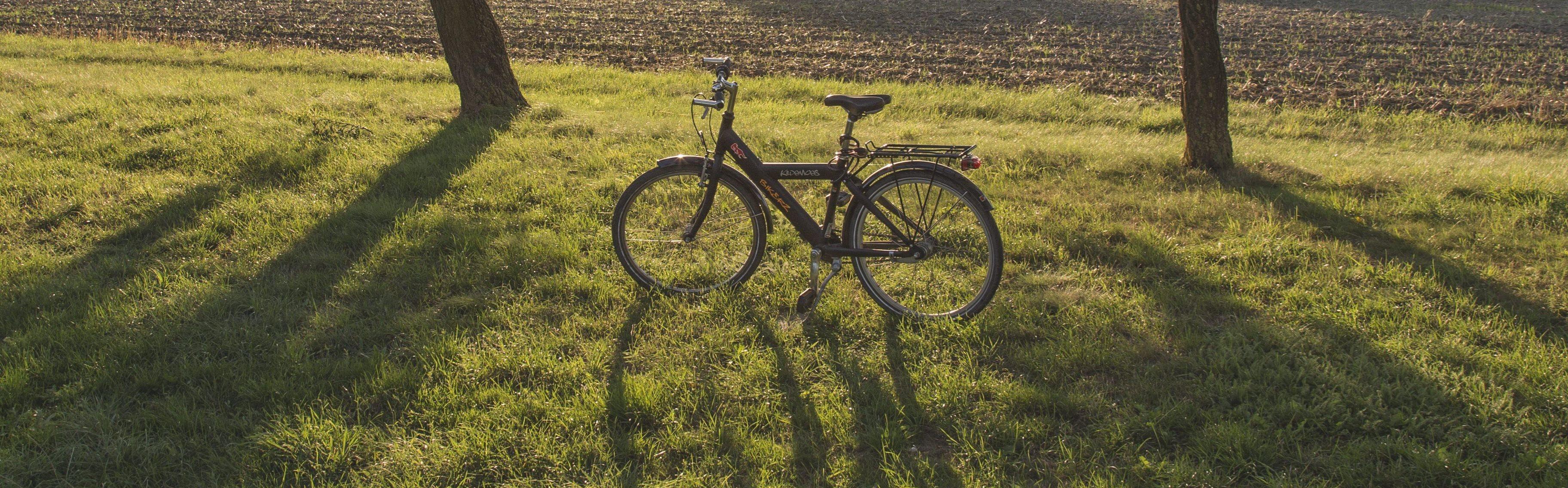 Bike in a field at sunset