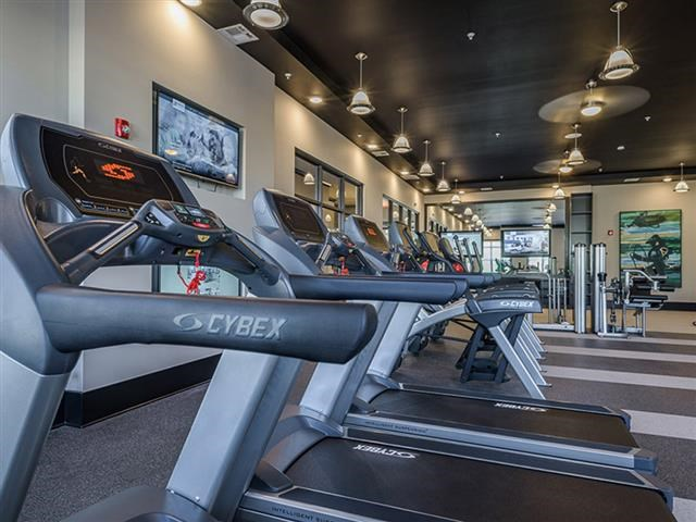 Fitness Center With Modern Equipment at Abberly Square Apartment Homes, Maryland