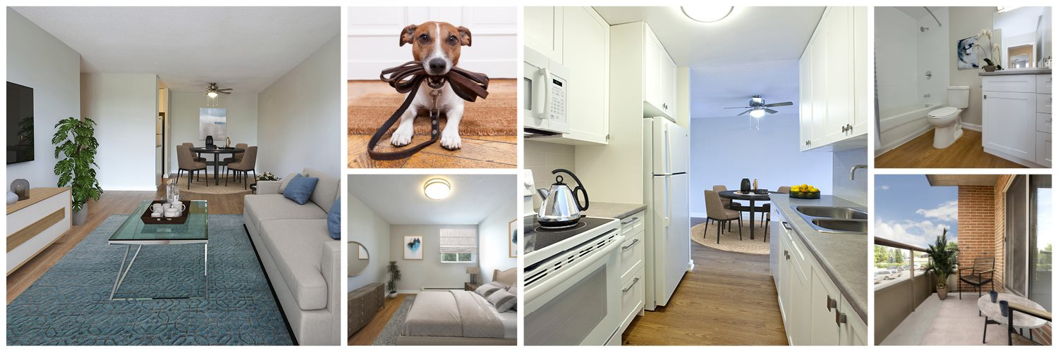 Collage of interior, exterior, and lifestyle images at Leamington Heights in Leaminton, ON