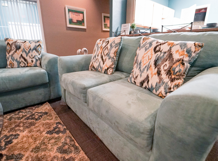 Clubhouse lounge with couches, coffee table and rug