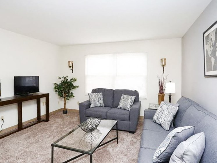 Brightly Lit Living Rooms in Urbana IL