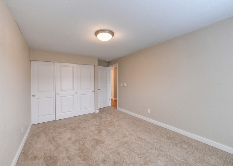 Bedroom with Carpet, Ceiling Light and White Walls