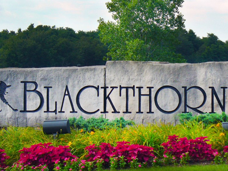Blackthorn Golf Club (less than 3 miles away)