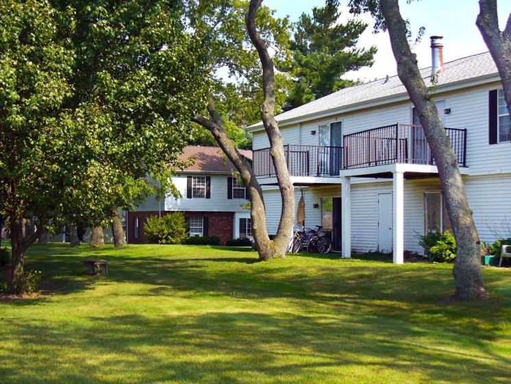 Maple Lane Backyard