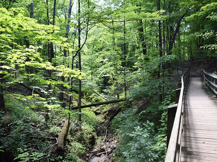 Akron Ohio Apartment Rentals Northampton Apartments by Redwood National Park access