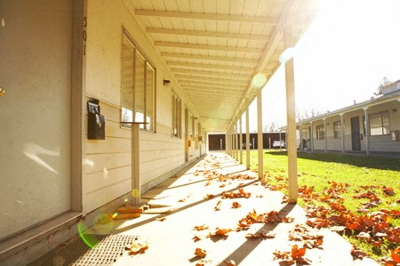Fall photo of leaves at Marpel Apartments