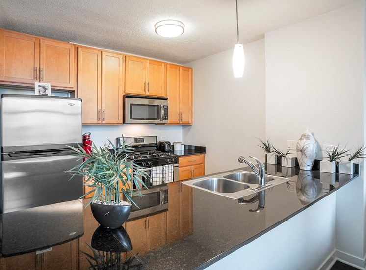 Alta's studio apartments feature fully equipped kitchens