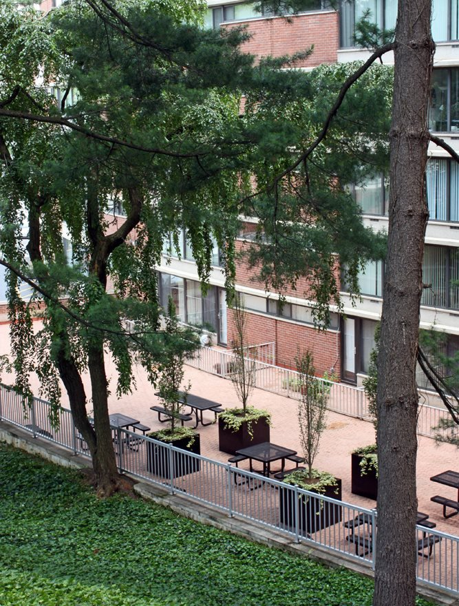 Resident Terrace for Social and BBQ