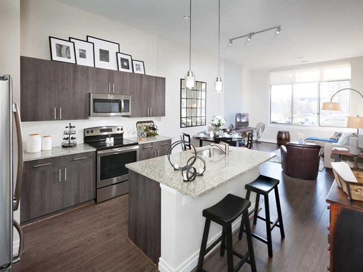 Spacious Kitchen with Pantry Cabinet at Harrison at Reston Town Center, Reston, VA, 20190