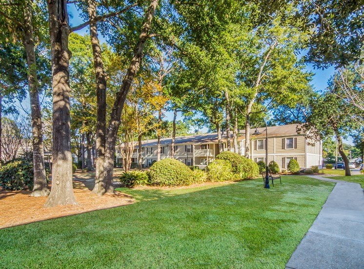Woodcliff apartment residences and wooded landscaping in Pensacola, Florida