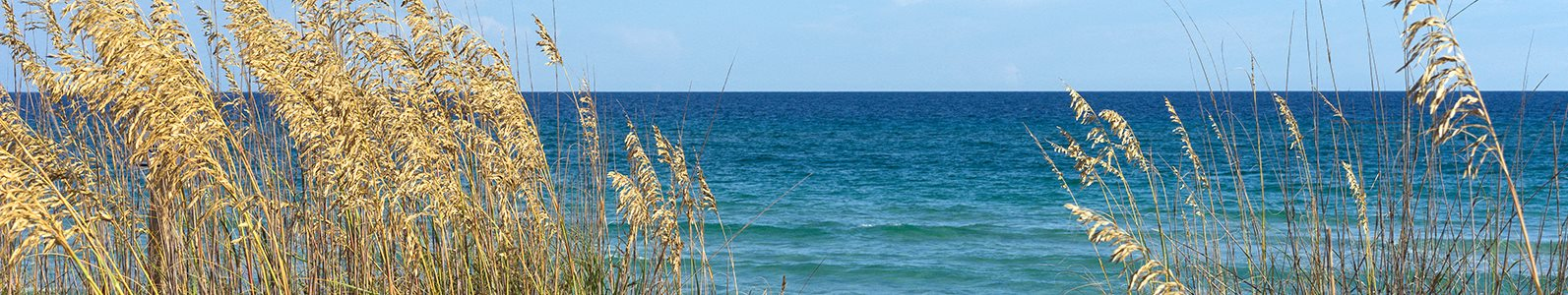Woodbine apartments near the beach in Riviera Beach, Florida