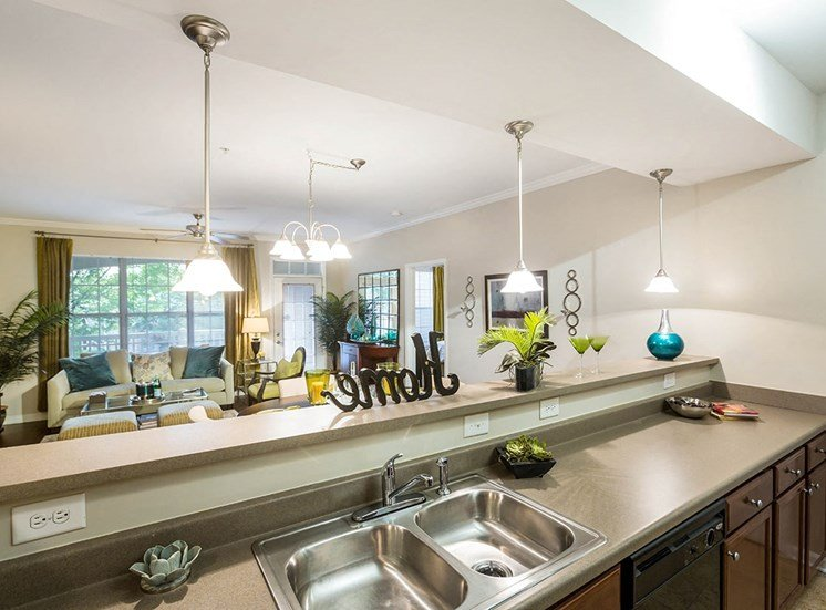 The Savoy apartment kitchens feature ample counter space