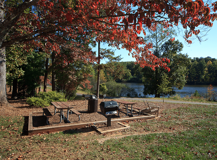 The Lodge at Crossroads apartments lakeside picnic area in Cary, North Carolina