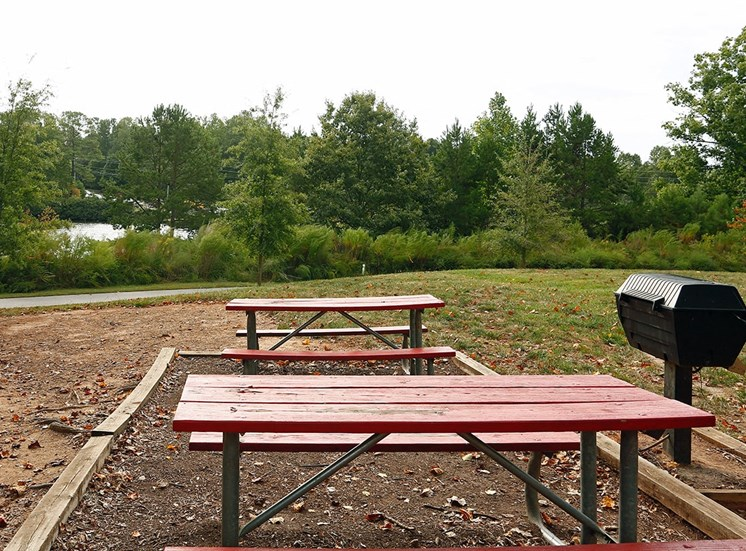 The Lodge at Crossroads apartments with lakefront picnic areas in Cary, North Carolina