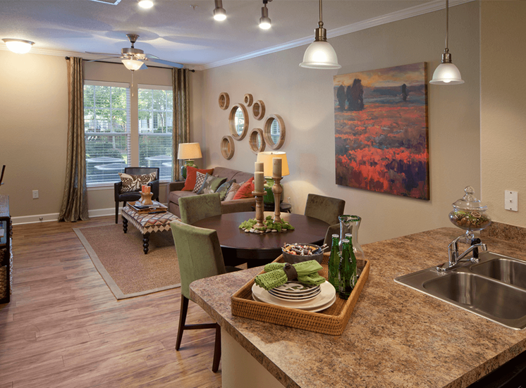 Perry Point model suite living area in Raleigh, North Carolina