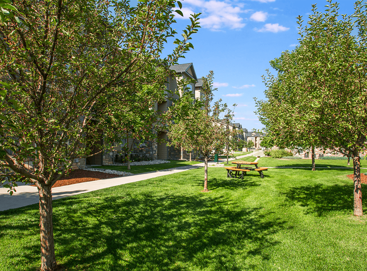 Settlers' Creek apartments picnic area in Fort Collins, Colorado