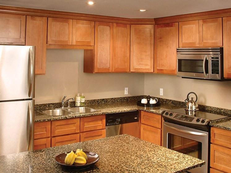 Energy Efficient Appliances & Light Fixtures