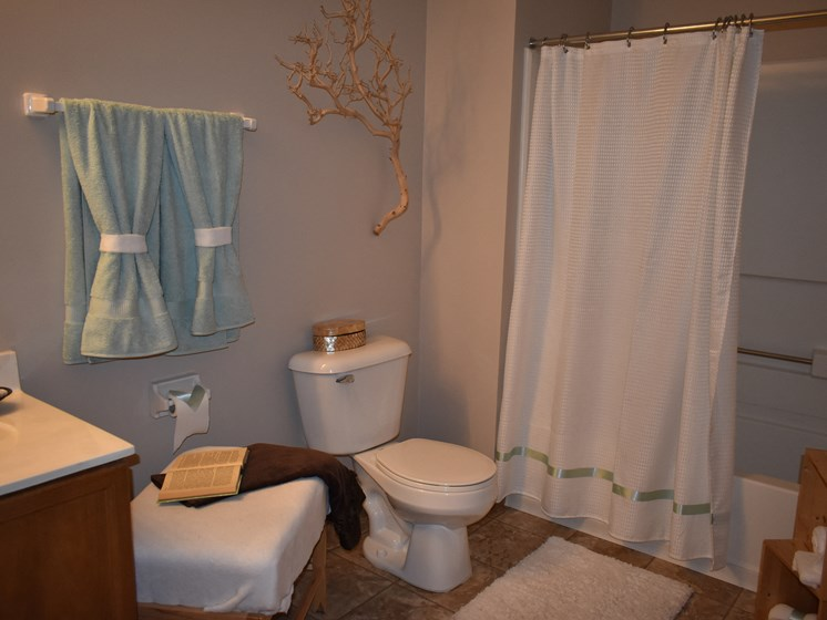 Large bathroom with tub and shower! (1BR apartment)