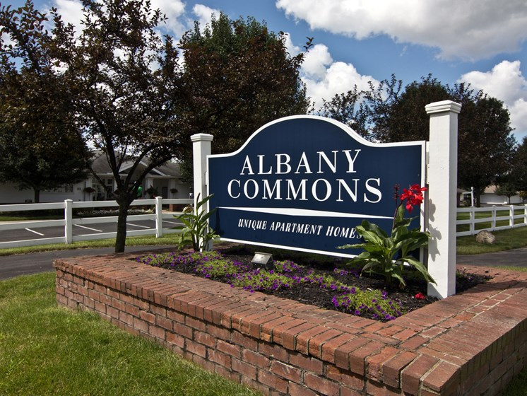 Welcome to Albany Commons!