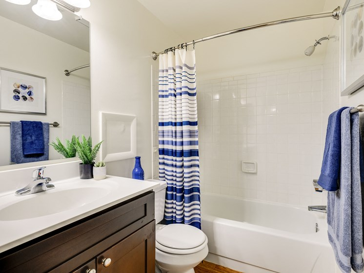 Soaking Tubs With Ceramic Tile at Westwinds Apartments, Maryland, 21403