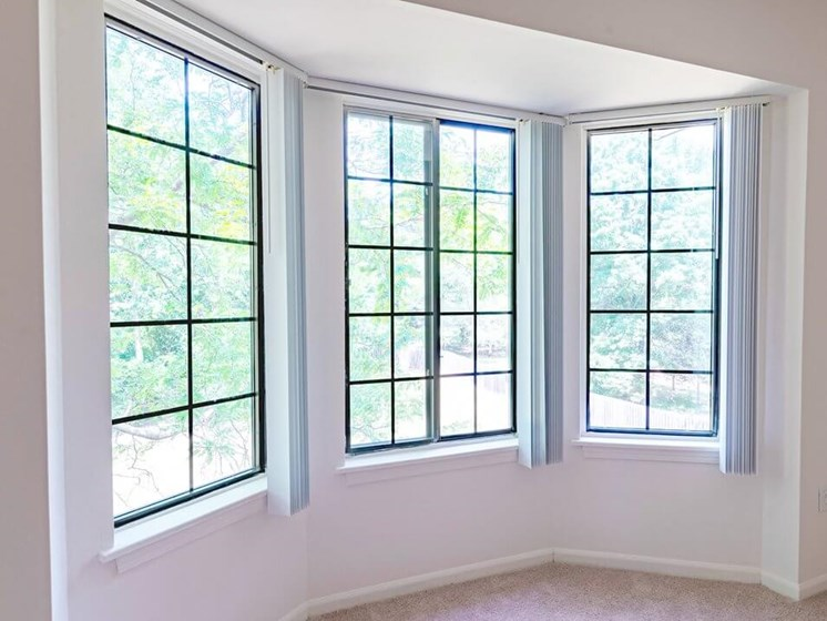 apartment with huge windows in Waterford