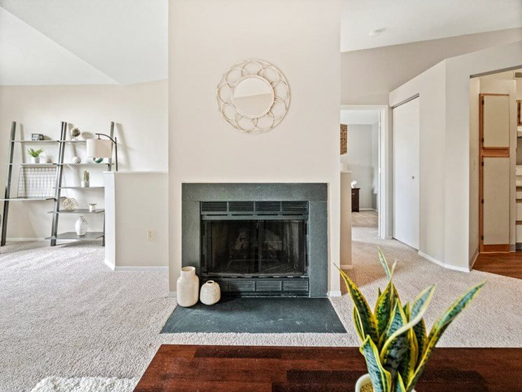 apartment with fireplace