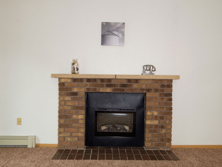 Dynasty 1 Apartments   2 Bedroom   Living Room   Fireplace