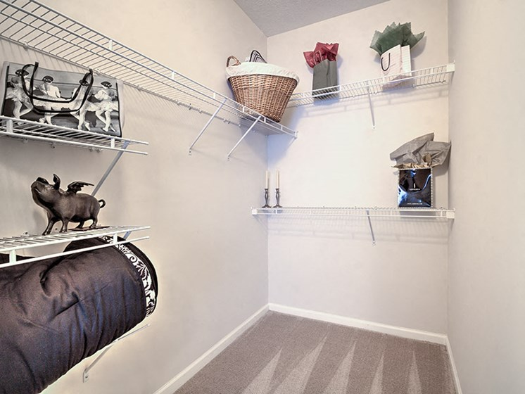 Spacious walk-in closets at Abberly Grove Apartment Homes by HHHunt, Raleigh, NC 27610