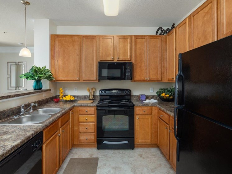 Efficient Appliances In Kitchen at Abberly Village Apartment Homes by HHHunt, West Columbia, SC, 29169