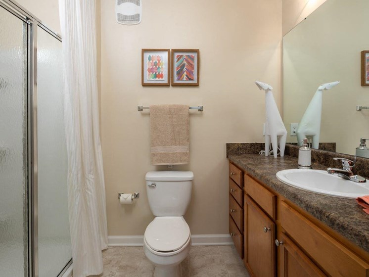 Renovated Bathrooms With Quartz Counters at Abberly Village Apartment Homes by HHHunt, South Carolina