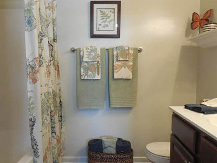 Bathroom Fitters at Abberly Twin Hickory Apartment Homes by HHHunt, Glen Allen, VA