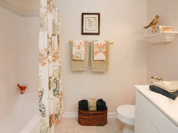 Designer Countertops In All Bathrooms at Abberly Twin Hickory Apartment Homes by HHHunt, Glen Allen