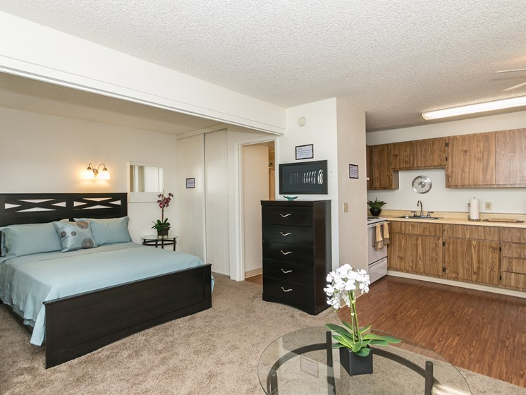 Studio Apartment Home with Separate Sleeping Area