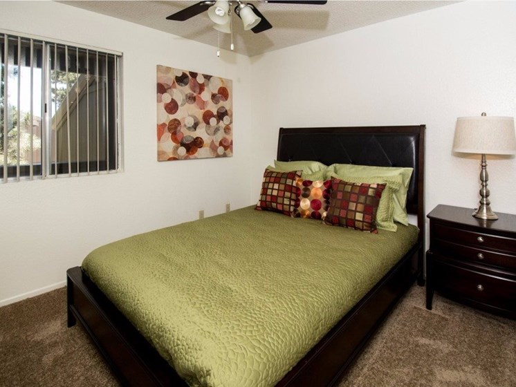 Spacious Bedrooms with Carpet
