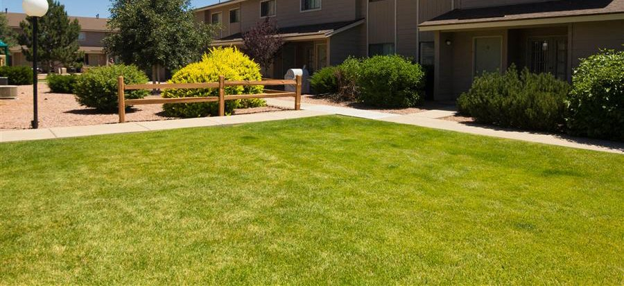 Spacious Lawn Areas with Beautiful Landscaping at Country Club Meadows Apartments, Flagstaff, AZ, 86004