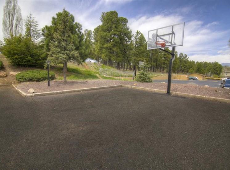 Basketball at University Square Apartments, Flagstaff, AZ,86001