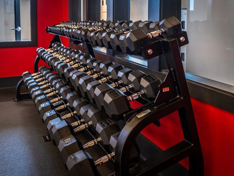 Free Weights at Foxridge Apartment Homes, Blacksburg, VA, 24060