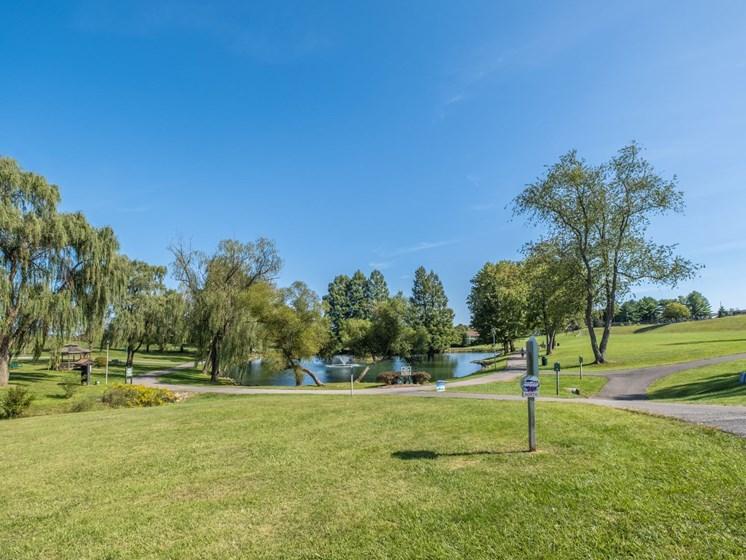 Big Lawn area1 at Foxridge Apartment Homes, Blacksburg, VA