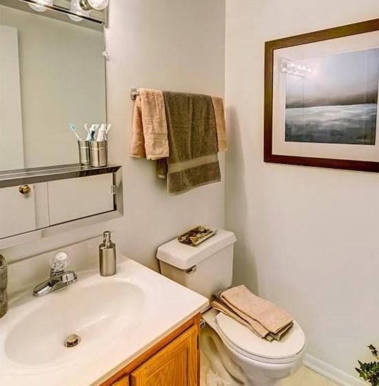 Brightly Lit Bathroom at Foxridge Apartment Homes, Blacksburg