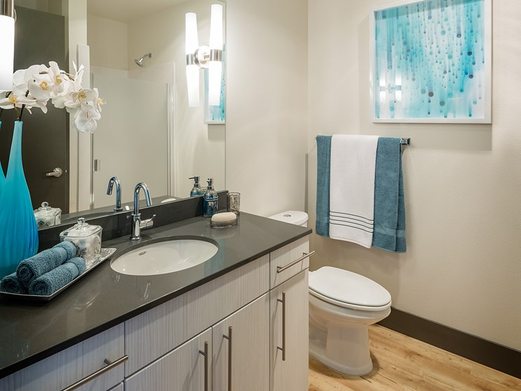 Apartments in Downtown Seattle - ArtHouse Apartments Bathroom with Wood Style Flooring. Spacious Countertops, and Lots of Storage Cabinets