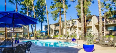 Shasta Lane Apartments Lifestyle - Pool Deck & Pool