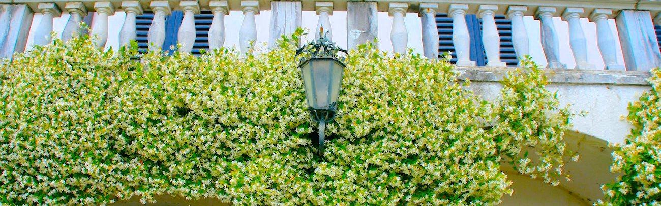 Grand Manor Balcony