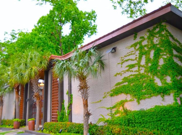 5808 Gaston The Villa Boutique Apartment Vine Accents