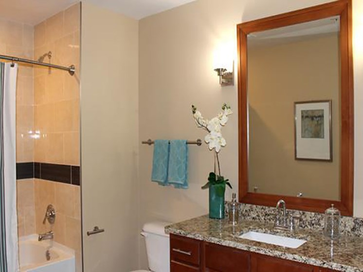 Granite Countertops in Bathrooms at Residences At 1717, Cleveland, OH, 44114