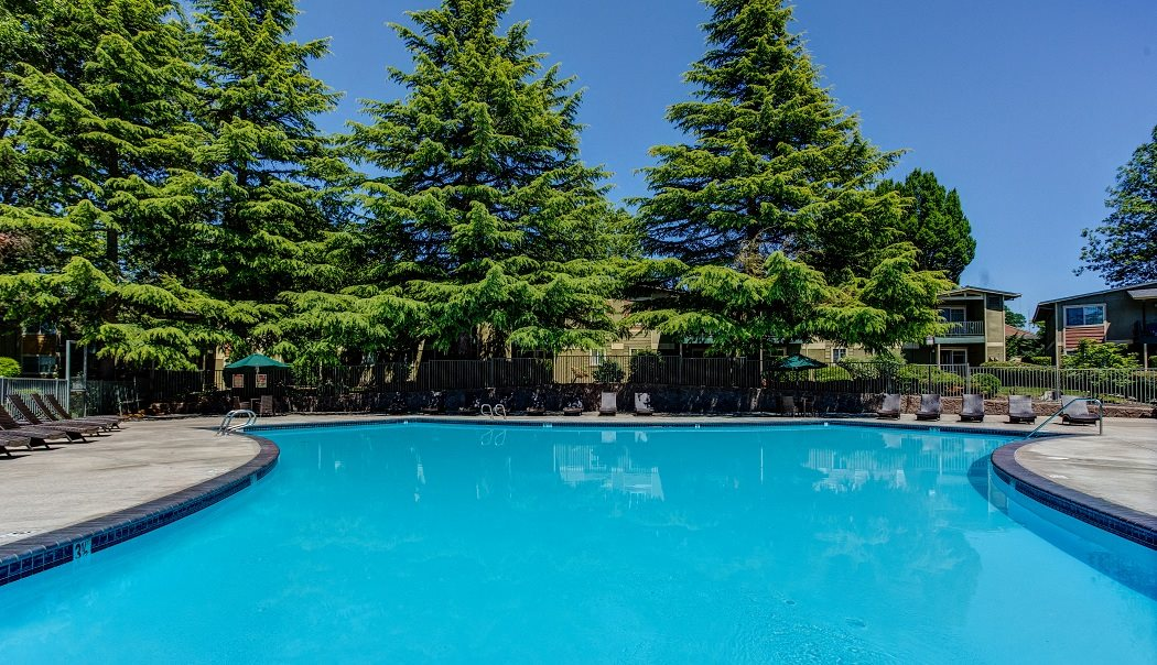 Sparkling Swimming Pool at Commons at Timber Creek Apartments, Portland, Oregon