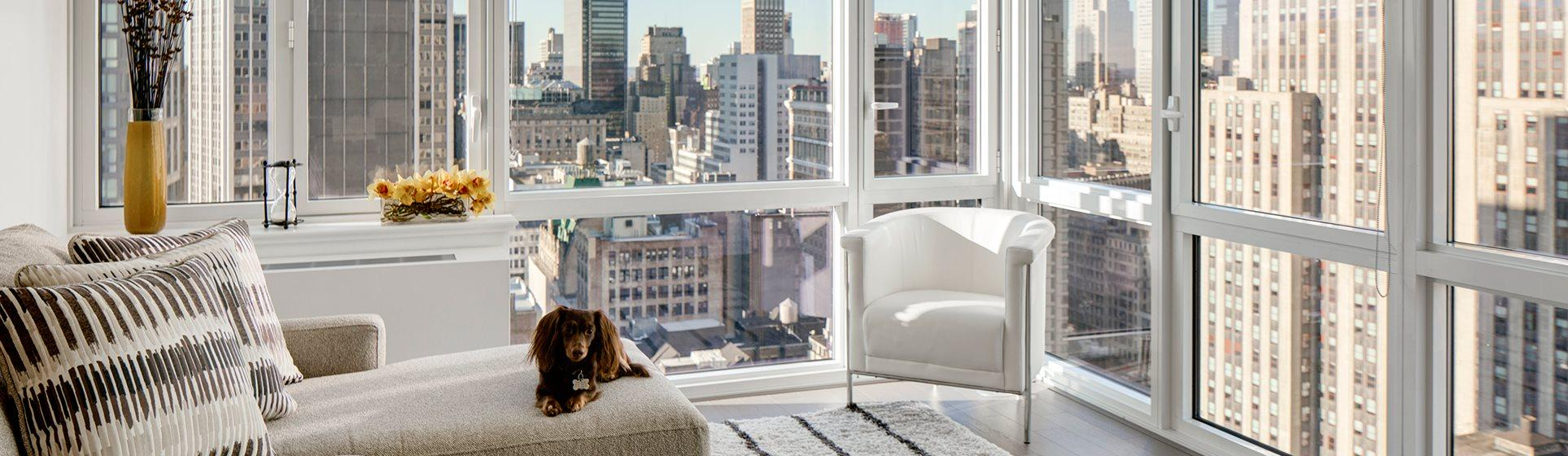 new york apartments for rent - the dylan