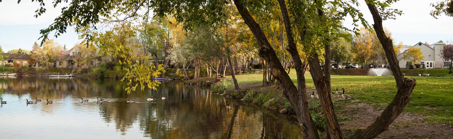Lake With Lush Natural Surrounding at Edgewater Apartments, Boise, 83703