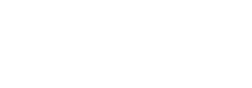 Discovery Point Logo