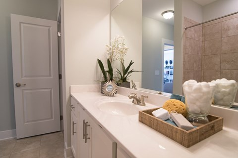 Bathroom Sink at Meridian at Fairfield Park, Wilmington