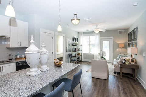 Granite Counter Tops In Kitchen at Meridian at Fairfield Park, Wilmington, 28412